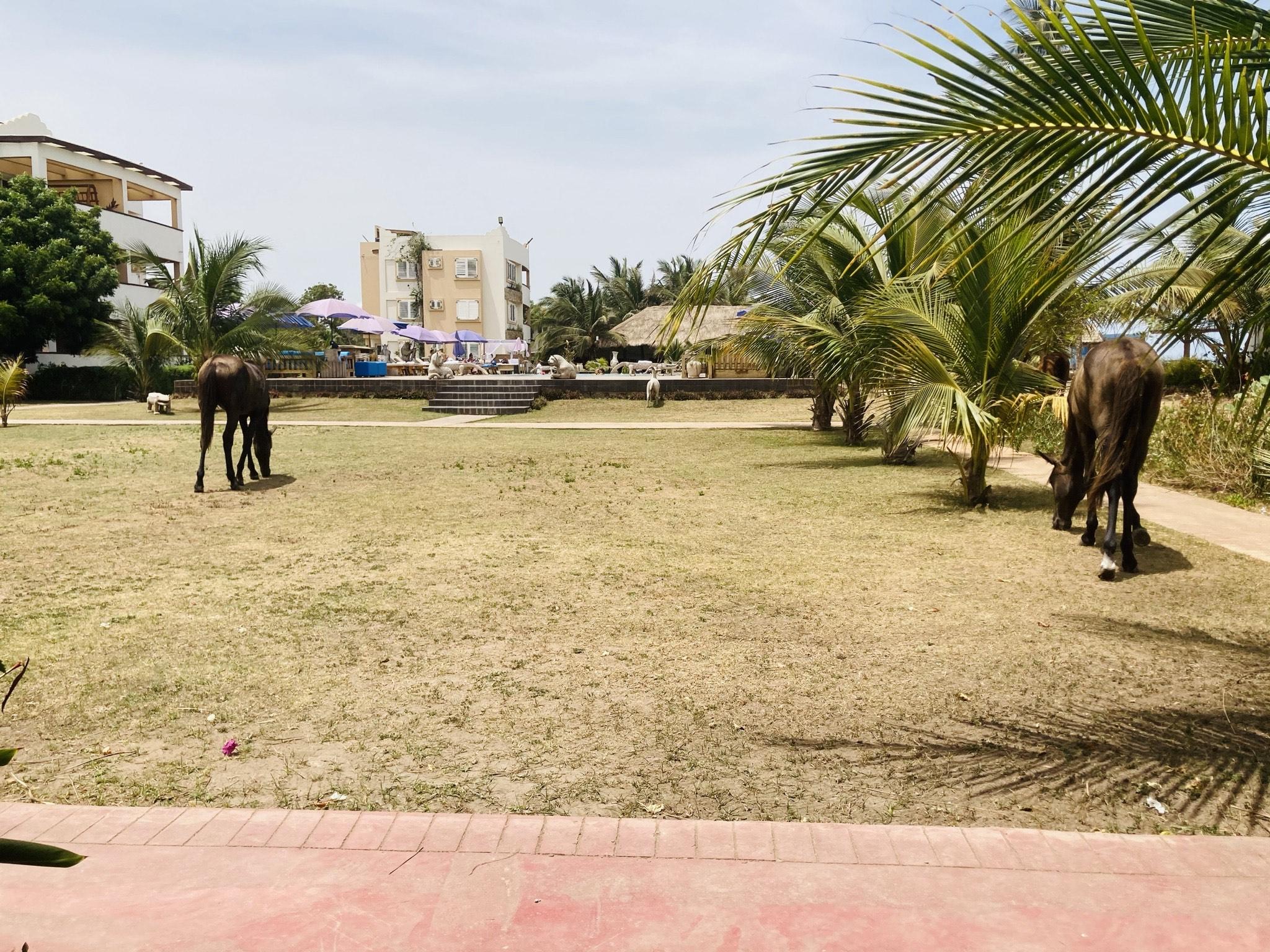 The C Residence & Resort